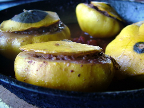 kangaroo stuffed summer squash
