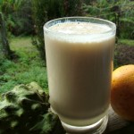 The Breakfast Challenge – Custard Apple and Orange Juice Smoothie