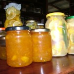 Kumquat Marmalade, Lemon Vinegar, Preserved Lemons, Lime Pickle – It Must Be Citrus Season