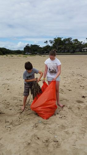 Jack and Emma collecting seaweed